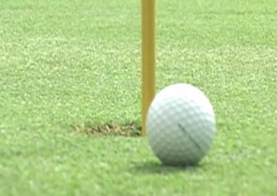Executive Golf Fun
